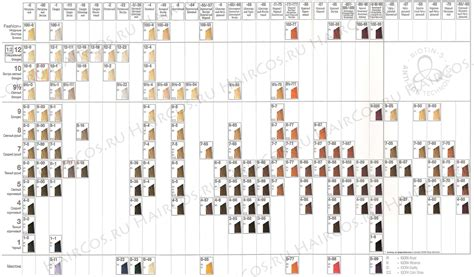 igora hair color instructions schwarzkopf color instructions hairstylegalleries com