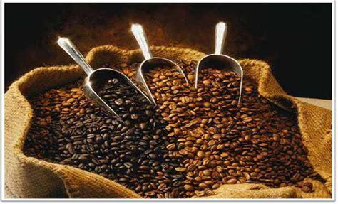 Biji Coffee kopi coffe wonobodro was mijn dorp