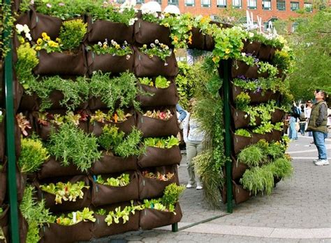 Edible Vertical Garden 10 Best Images About Edible Container Gardens On