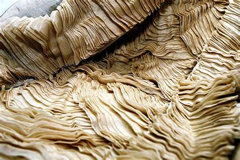How To Make Paper From Plant Fibers - textile tuesday sustainable textiles f i n d s