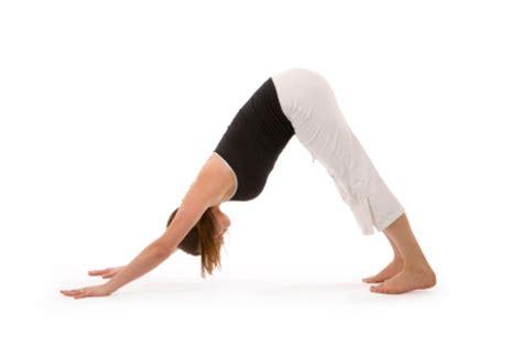Draw Floor Plans Free by Yogaclassplan Com Yoga Pose Downward Facing Dog
