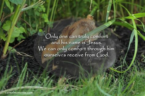 comforting words of jesus comforting when words don t come gather for bread