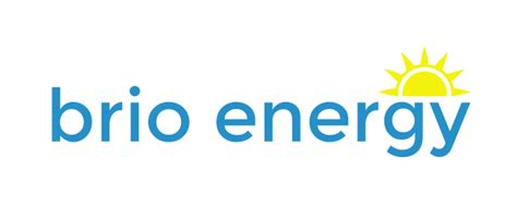 brio jobs lead setting manager trainer at brio energy