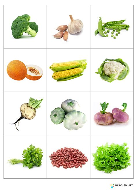 Bp Gift Card Where To Use - fruits and vegetables on pinterest fruit memory games and vegetables