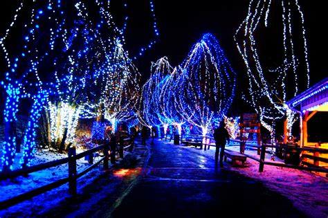 christmas lights wallpapers pictures pics photos