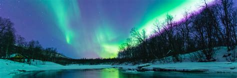 northern lights 2016 2017 northern lights 2017 lapland holidays