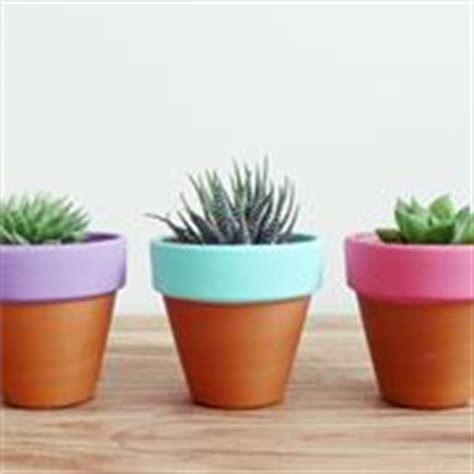 vasi terracotta prezzi vasi in terracotta vasi e fioriere