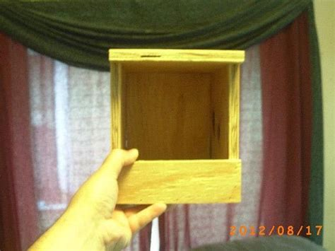 button quail nest box