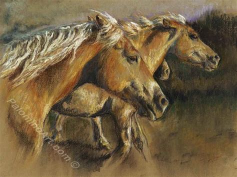 drawing and painting animals mary povey animal art home page