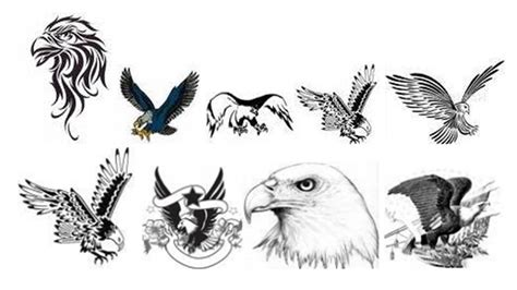 eagle head tattoo designs zoom tattoos eagle designs