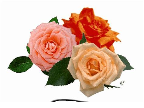 fiori gif animate fiori glitter