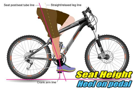 mountain bike seat height adjustment newbies guide to seat adjustment momentum is your friend