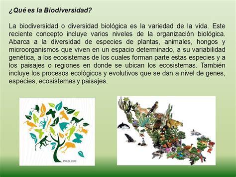191 qu 233 es la biodiversidad ppt video online descargar