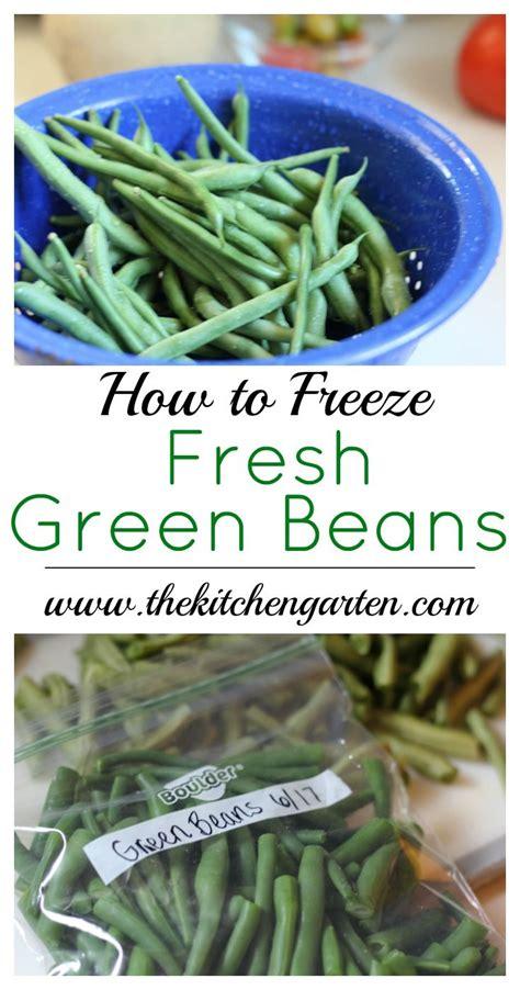 best 25 freeze fresh green beans ideas on pinterest freezing green beans freeze beans and