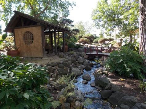 japanese garden picture of rotary botanical