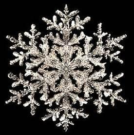 Bentley Snowflake Prints Vermont Snowflakes Quot Snowflake Quot Bentley Collection Prints