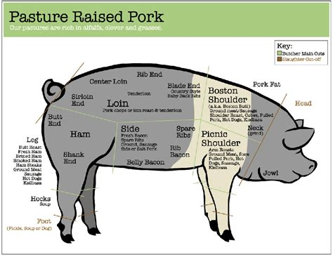 pig diagram pork pricing cut info
