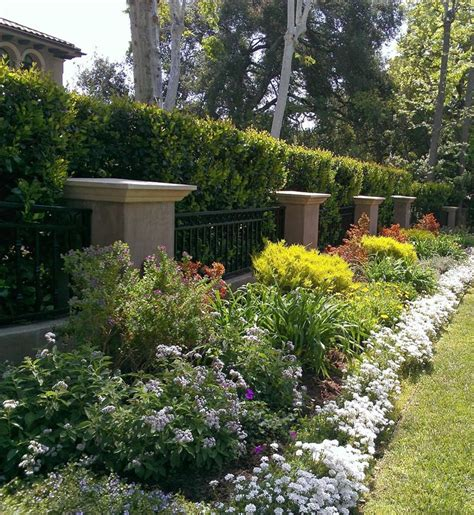 10 best images about diy landscape design for beginners on front yards small yards