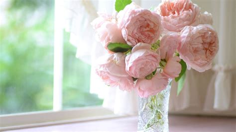 Flowers On A Vase Download Wallpaper Rose Window Bouquet Vase Windowsill