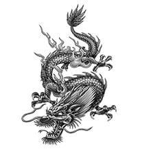tattoo dragão oriental preto e branco 0 desenhos de tatuagem de drag 227 o mundo das tatuagens
