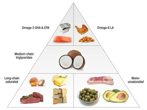 Lebensmittel Omega 3 Fettsäuren by Gesunde Ern 228 Hrung Das Verh 228 Ltnis Omega 3 Zu Omega 6