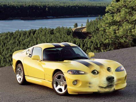 Doge Car Meme - doge viper doge know your meme