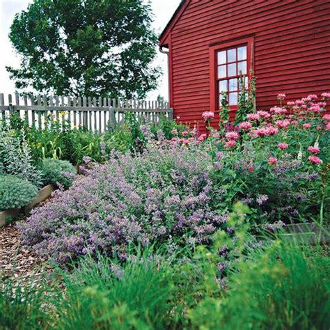 Gardenia Growing Conditions Gardens Sun And Birds On