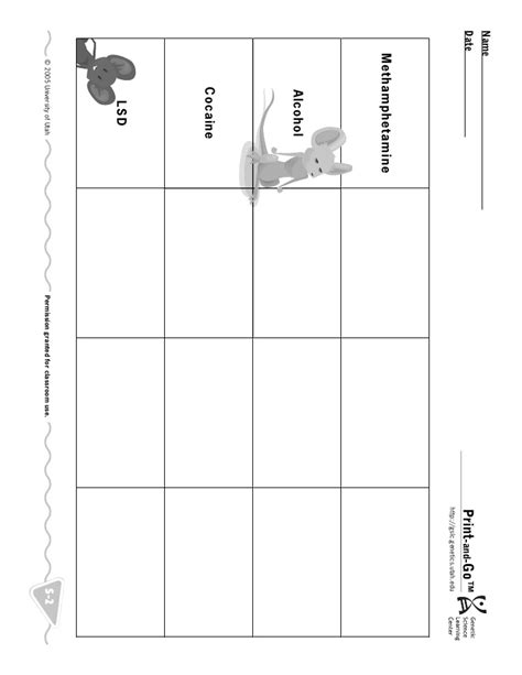 Mouse Worksheet Answers by Mouse