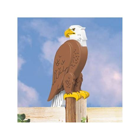 eagle woodworking tools 59 best ayard animals images on woodworking