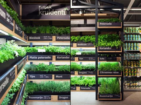 Gardening Stores Grocery Store Herb Gardens Instore Farming