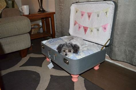 suitcase dog bed every dog owner should learn these 20 diy pet projects