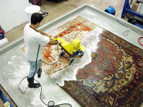 Rug Wash by The Glided Hare
