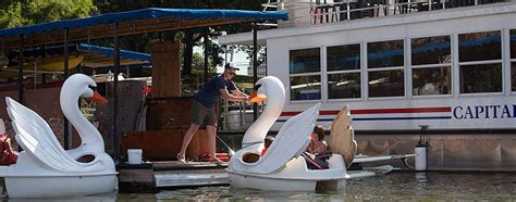 swan boats austin canoes kayaks and swan pedal boats capital cruises