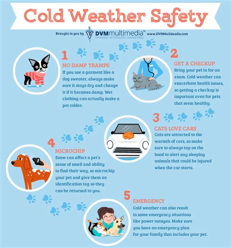 7 Tips On Keeping Warm by Jaikumar Pareta Tips For Staying Safe In Cold Weather By