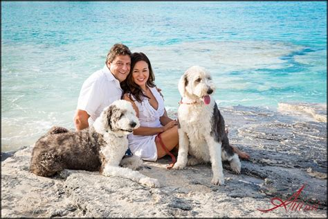 puppy island turks and caicos the challenge attimi photography turks and caicos photographer