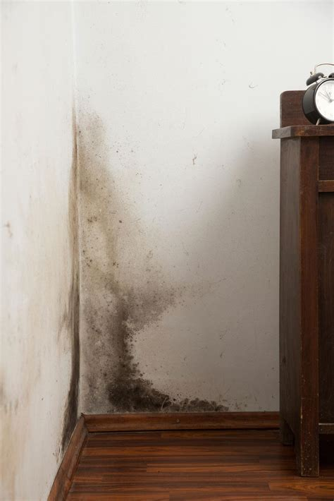 schimmelbefall im schlafzimmer schimmel an der wand werden sie den schimmel los