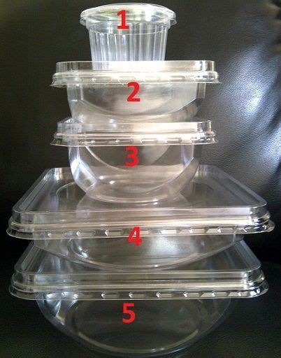 Jual Plastik Kemasan Bento 22 Best Images About Ideas On Trays Bento Box