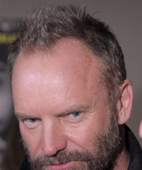 sting has a receding hairline so he tends to wear his hair short 45 inspirational men s hairstyles for thin hair