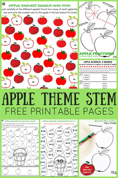 Apple Theme Worksheets And Apple Stem Activities Free Pages Printables Activities