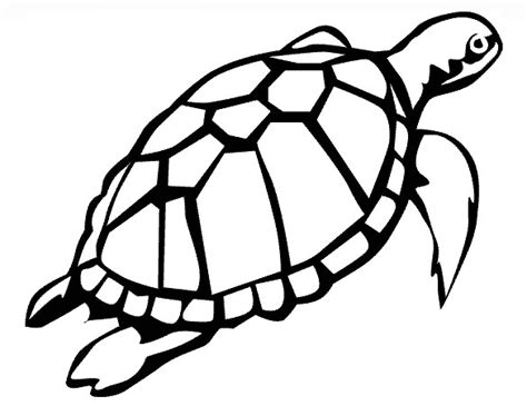 20 Turtle Templates Crafts Colouring Pages Free Turtle Coloring Page