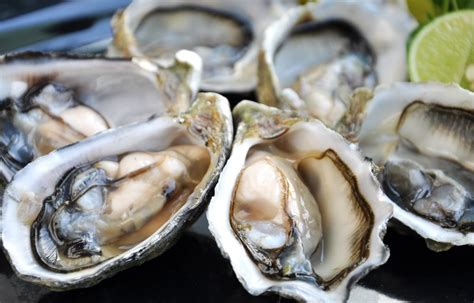 Oyster Health image gallery oyster extract side effects