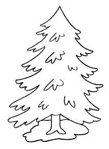 tree coloring pages 7 pine trees coloring pages