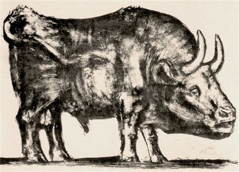 picasso paintings bull animals in pablo picasso