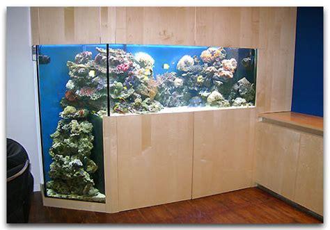 aquarium design sans entretien un aquarium avec fosse