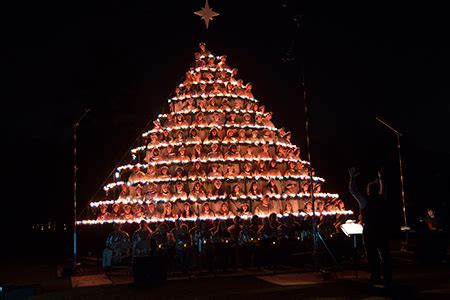 81st belhaven university singing christmas tree