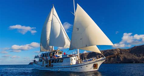 galapagos islands boats galapagos boats galapagos islands travel andean trails