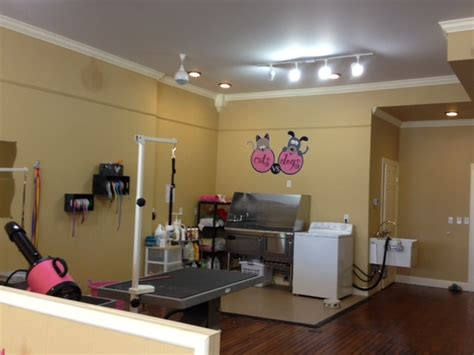 Dog Grooming Salon Floor Plans pets get top dog treatment at new cat and dog grooming