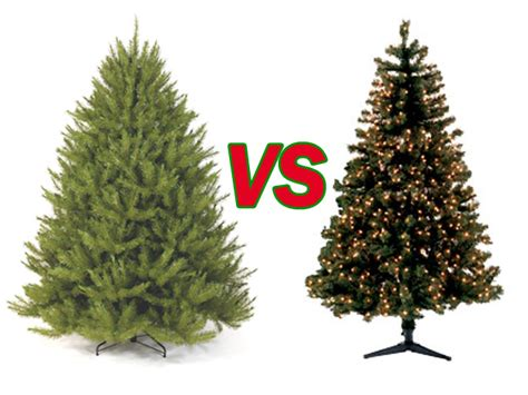 Real christmas trees vs fake christmas trees a round world through