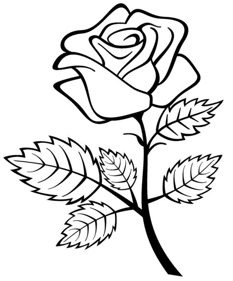 Free Printable Coloring Pages Of A Rose | free printable roses coloring pages for kids