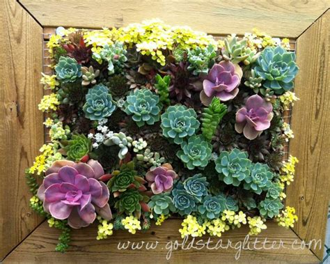 best 25 succulent wall gardens ideas on